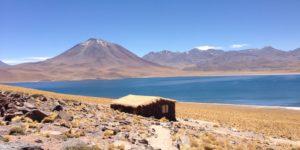 Cile - Laguna Miscanti - Alida Travel