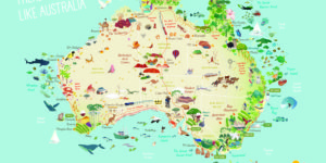 itinerari australia - alida travel