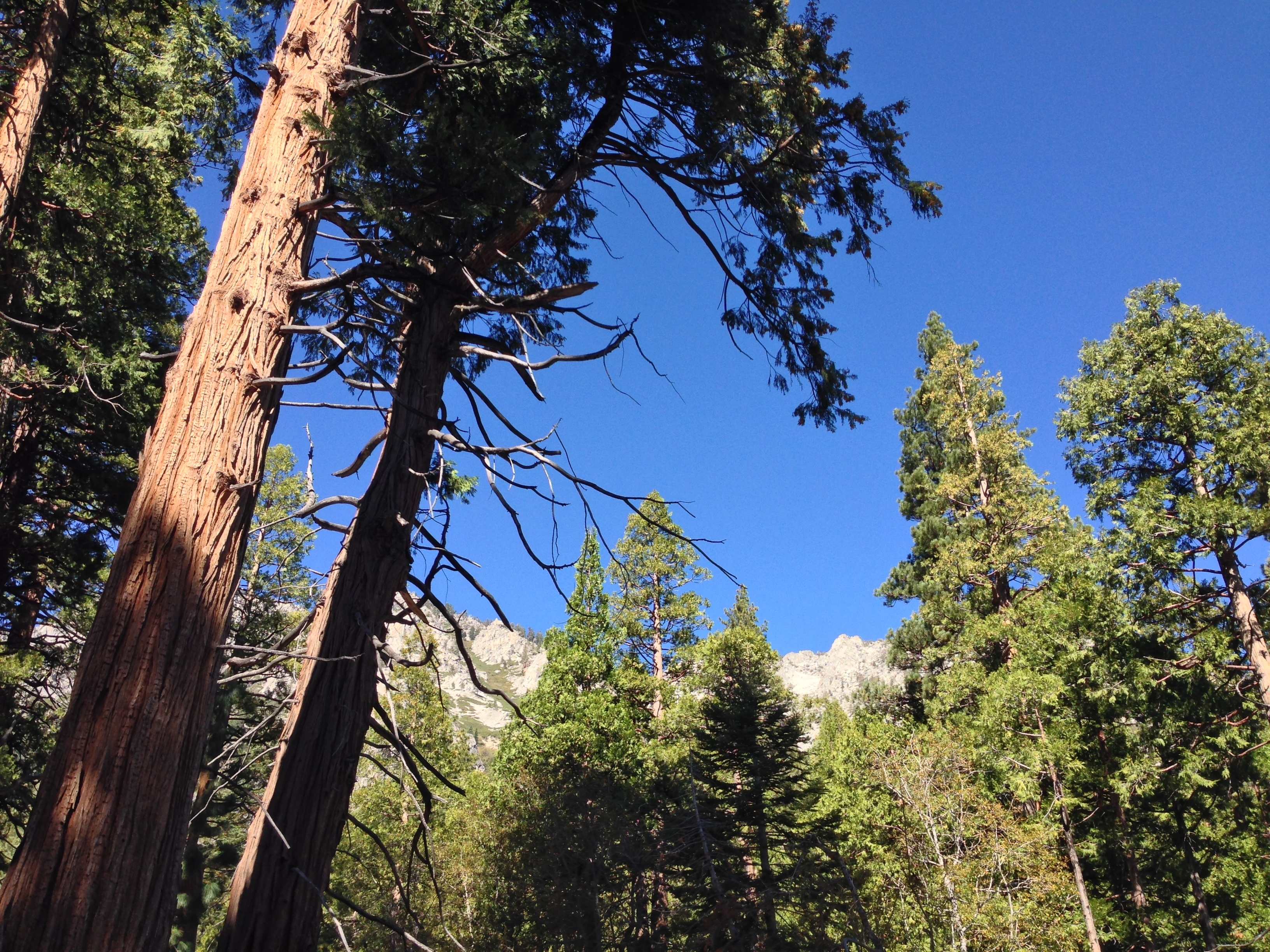 Lake Tahoe - California - Alida Travel