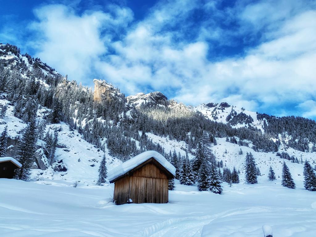 dolomiti e val di fassa in inverno, ciaspolate sulla neve. in viaggio con alida travel